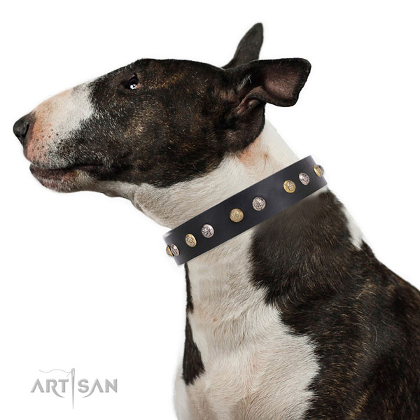 Full grain leather dog collar with strong buckle and D-ring for everyday use