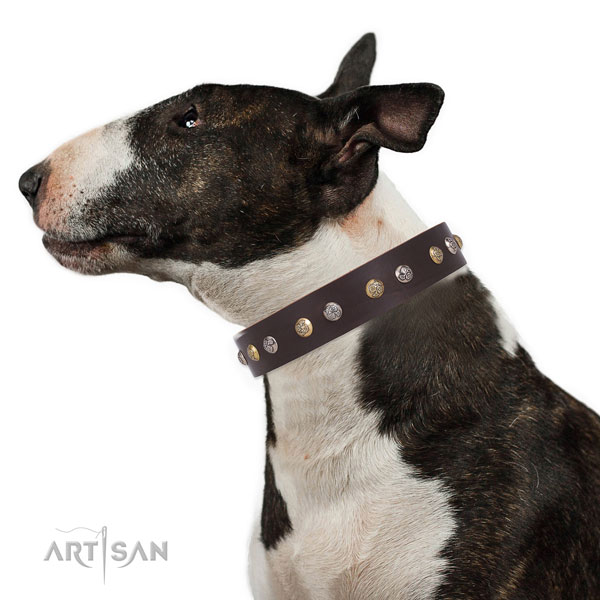 Full grain leather dog collar with durable buckle and D-ring for walking