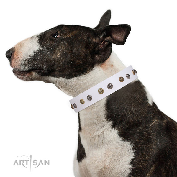 Comfortable wearing adorned dog collar made of reliable leather