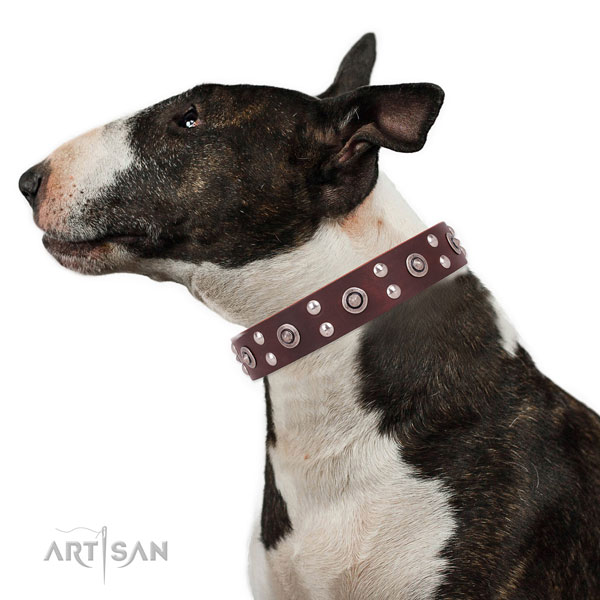 Walking dog collar with fashionable studs