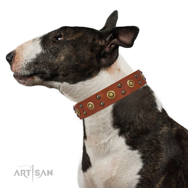Handy use dog collar with fashionable studs