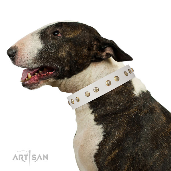 Unique studs on comfortable wearing genuine leather dog collar