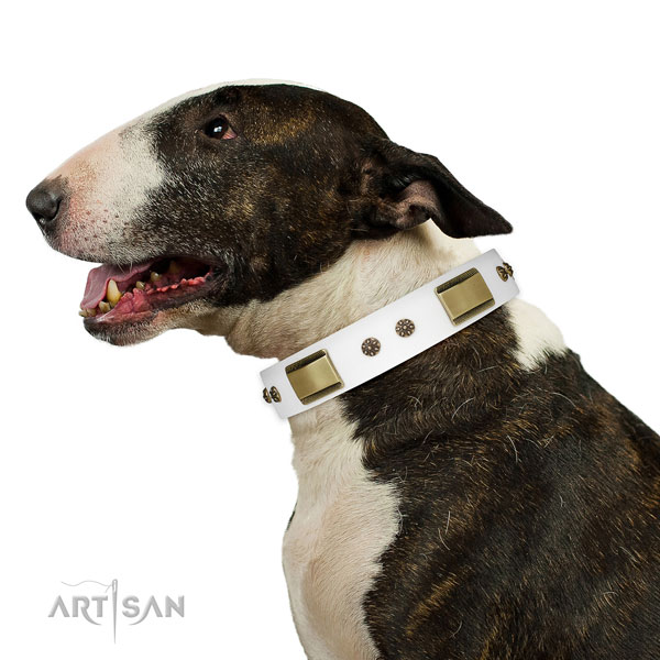Handy use dog collar of genuine leather with unusual embellishments
