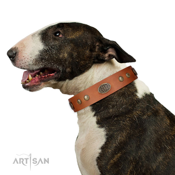 Rust-proof D-ring on genuine leather dog collar for comfortable wearing