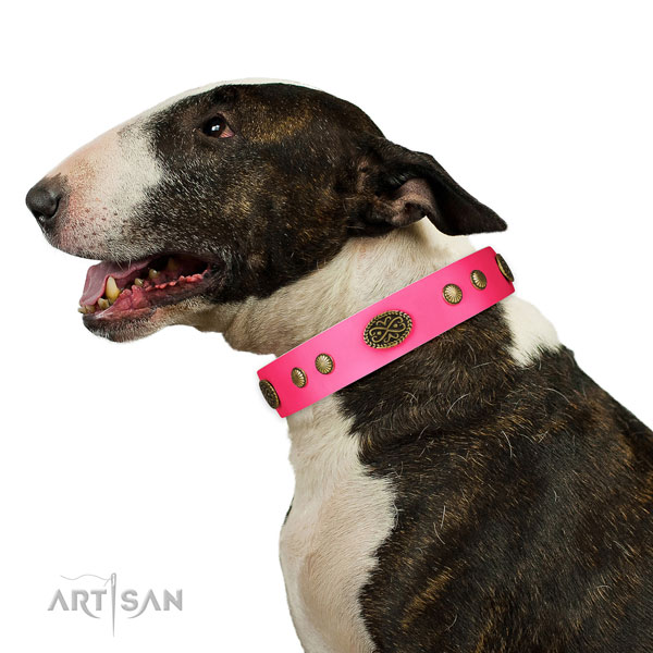 Rust resistant D-ring on natural leather dog collar for comfortable wearing