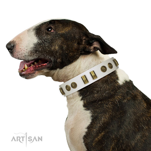 Rust-proof D-ring on leather dog collar for fancy walking
