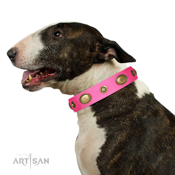 Comfy wearing dog collar of genuine leather with trendy embellishments