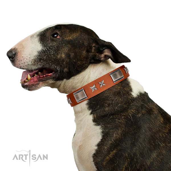 Everyday use reliable full grain leather dog collar with studs