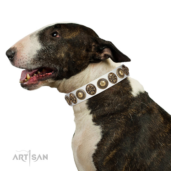 Inimitable full grain genuine leather collar for your handsome four-legged friend