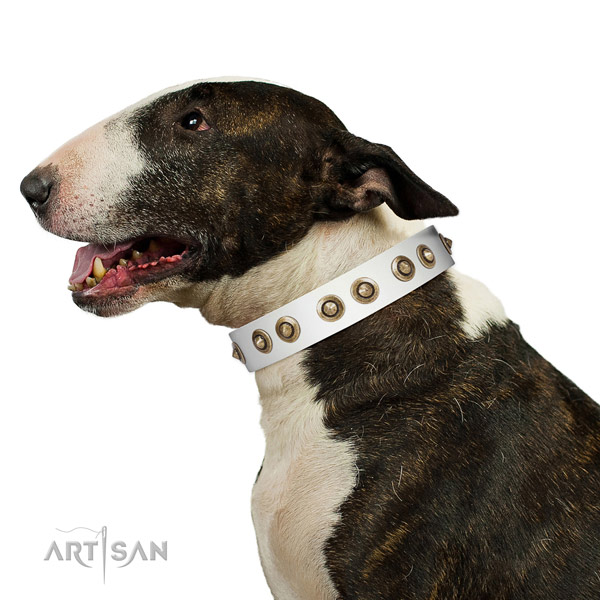 Handy use dog collar of natural leather with top notch decorations
