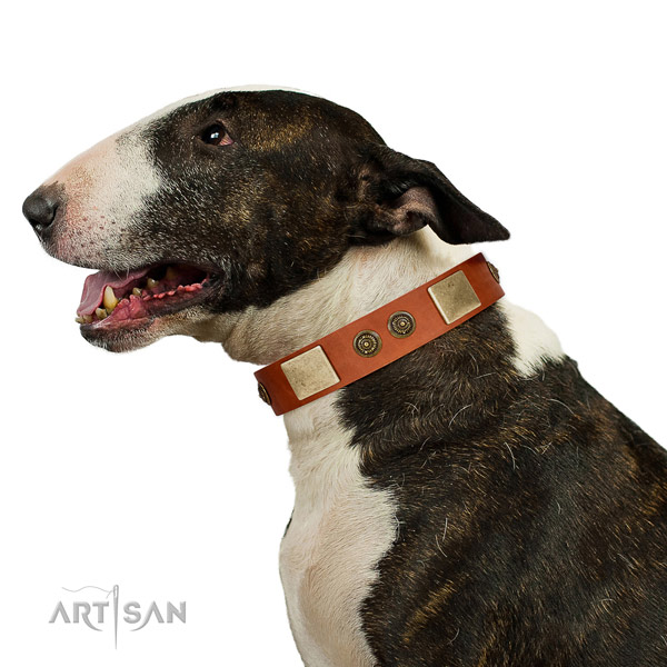 Embellished dog collar handmade for your lovely canine