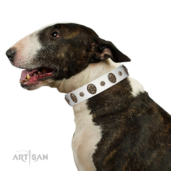 Easy wearing dog collar of natural leather with incredible decorations