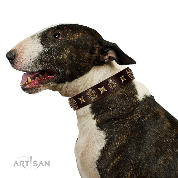 Basic training dog collar of leather with designer adornments