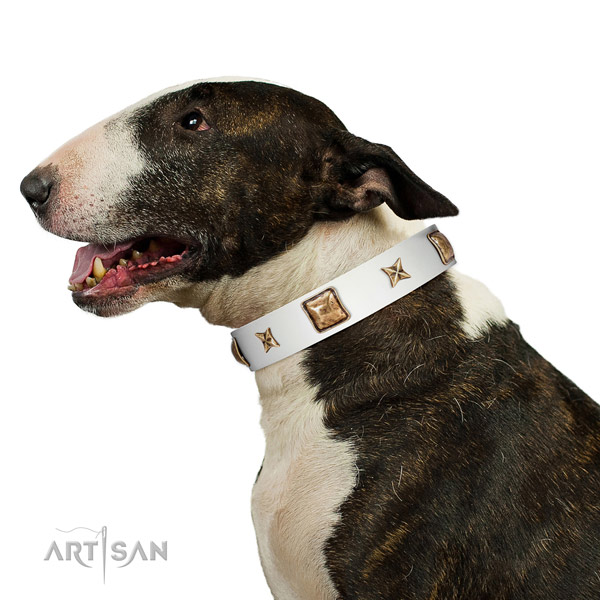 Easy wearing full grain natural leather dog collar with adornments