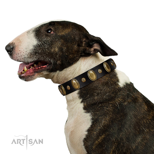Genuine leather dog collar of gentle to touch material with unusual decorations