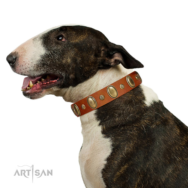 Stylish design full grain natural leather dog collar with corrosion proof hardware