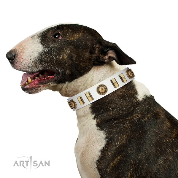 Exceptional natural leather dog collar with strong D-ring