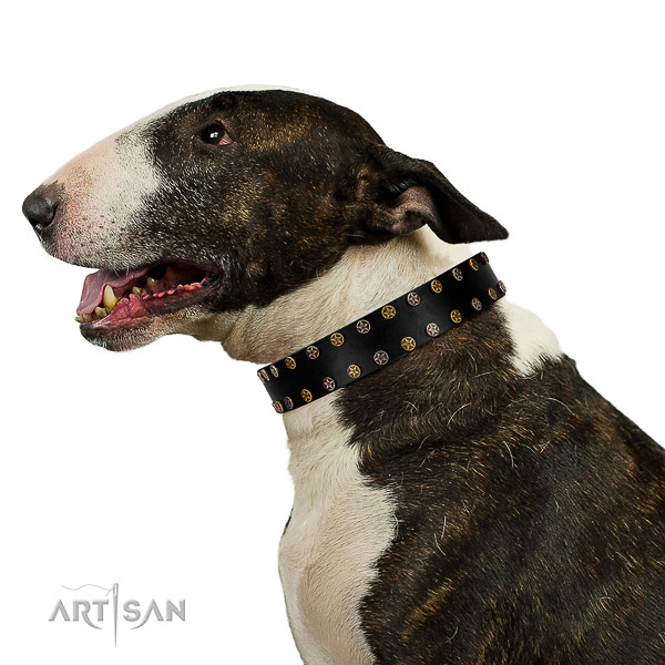 Exquisite full grain leather dog collar with rust resistant studs