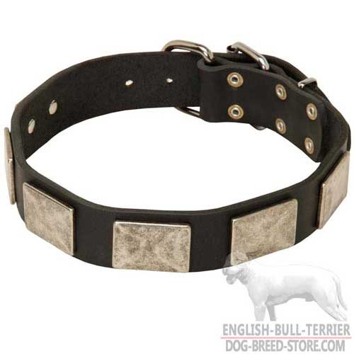 Comfy Leather Bull Terrier Collar for Walking