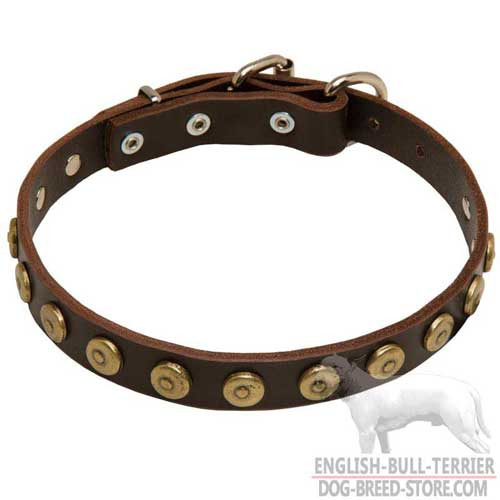 Bull Terrier Supplies presents: Fashion Wide Leather Dog Collar for Everyday Walking