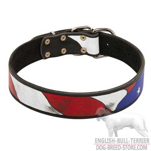 Hand Painted Leather Dog Collar for Bull Terrier Walking