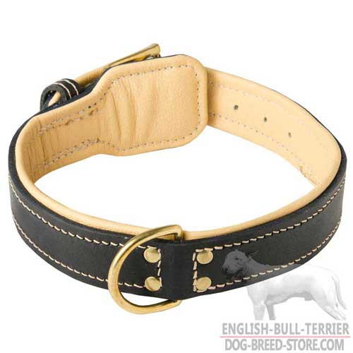 Soft Nappa Padded Leather Bull Terrier Collar with Brass Ring