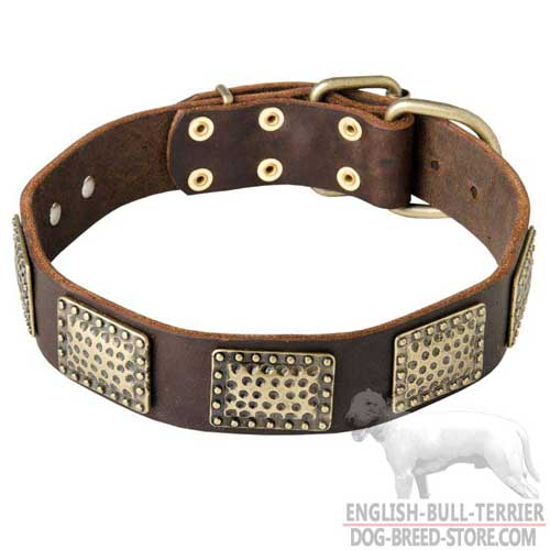 Vintage Design Leather Bull Terrier Collar