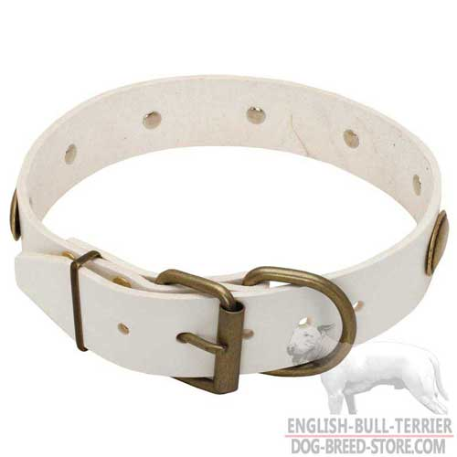 Designer White Leather Bull Terrier Collar with Durable Buckle