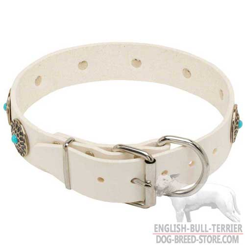 Fancy White Leather Bull Terrier Collar with Durable Nickel Buckle