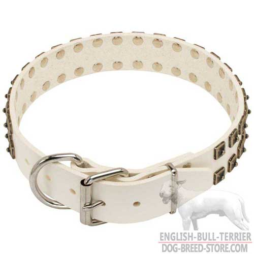 White Leather Bull Terrier Collar with Rust Proof Nickel Plated Fittings