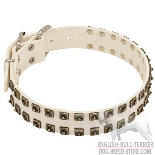 Hand-Decorated White Leather Bull Terrier Collar with Stylish Brass Studs