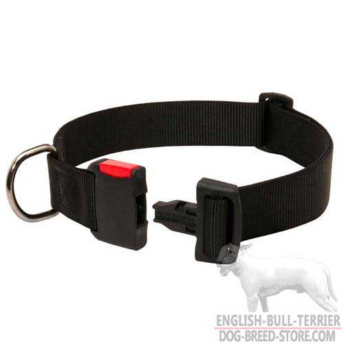 Nylon Bull Terrier Collar with Plastic Quick Release Buckle