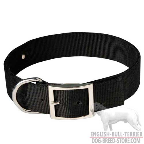 Walking Nylon Bull Terrier Collar with Steel Nickel Plated Buckle and D-Ring