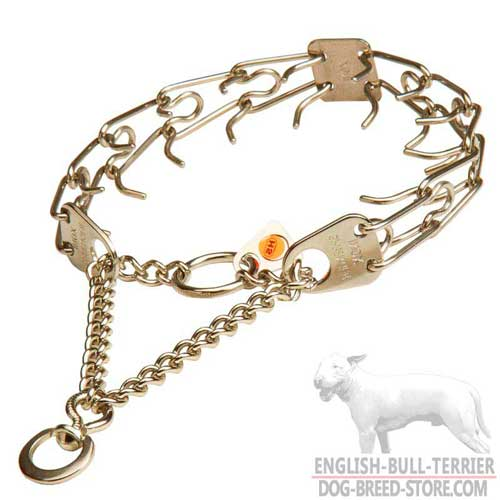 Bull Terrier Pinch Collar with Rustproof Prongs