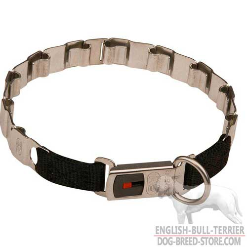 Neck Tech Bull Terrier Pinch Collar with Click-Lock System