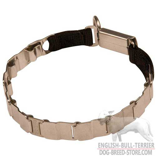 Rustproof Stainless Steel Bull Terrier Pinch Collar