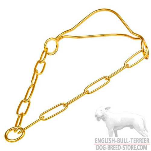 Bull Terrier Show Collar with Durable Durable Brass O-Ring