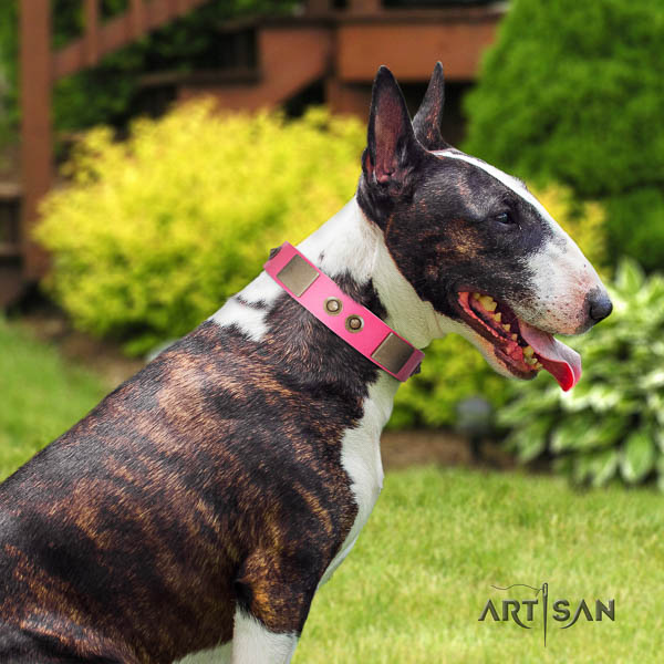 Bull Terrier easy adjustable full grain natural leather dog collar with adornments