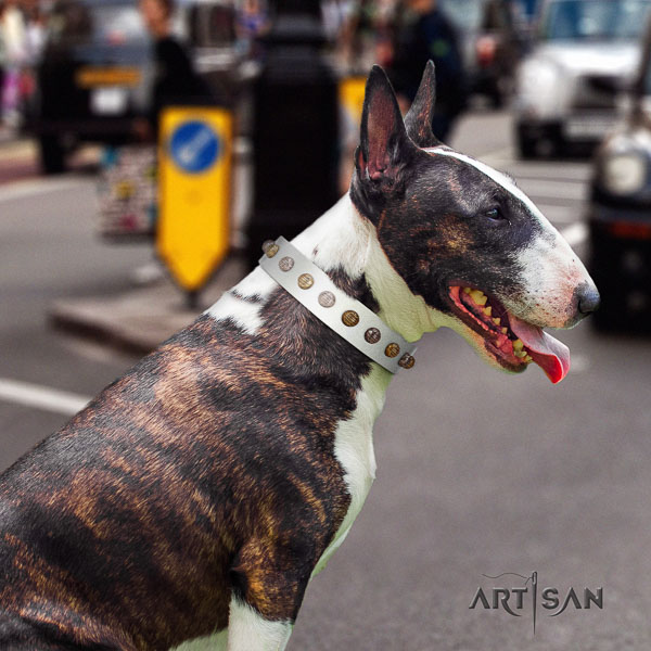 Bull Terrier walking dog collar of top quality leather