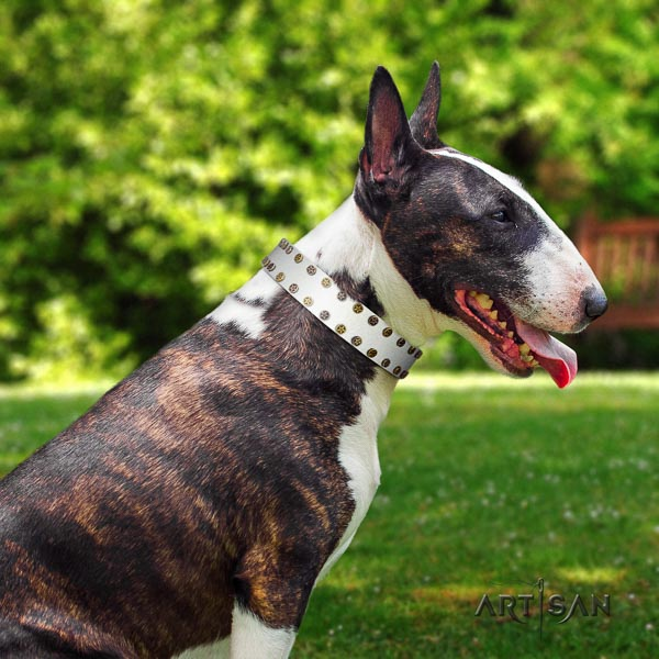 Bull Terrier perfect fit full grain genuine leather dog collar with embellishments