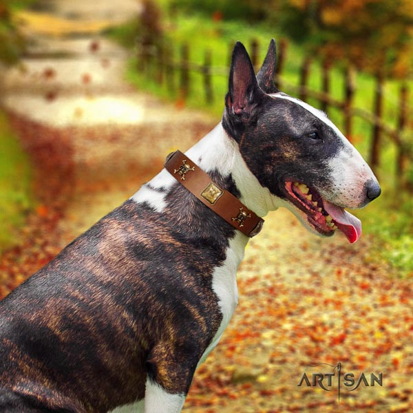 Bull Terrier handcrafted full grain genuine leather dog collar with decorations
