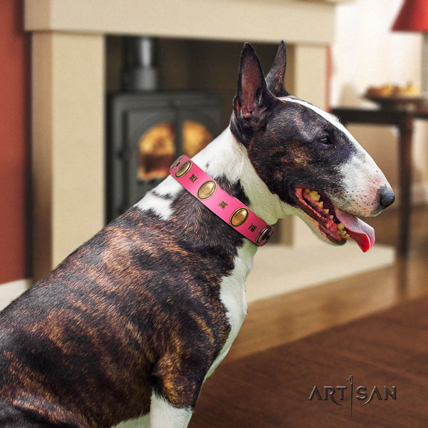 Bull Terrier everyday use dog collar of best quality leather