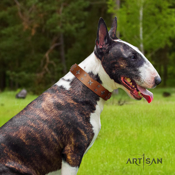 Bull Terrier stylish walking dog collar of remarkable quality genuine leather