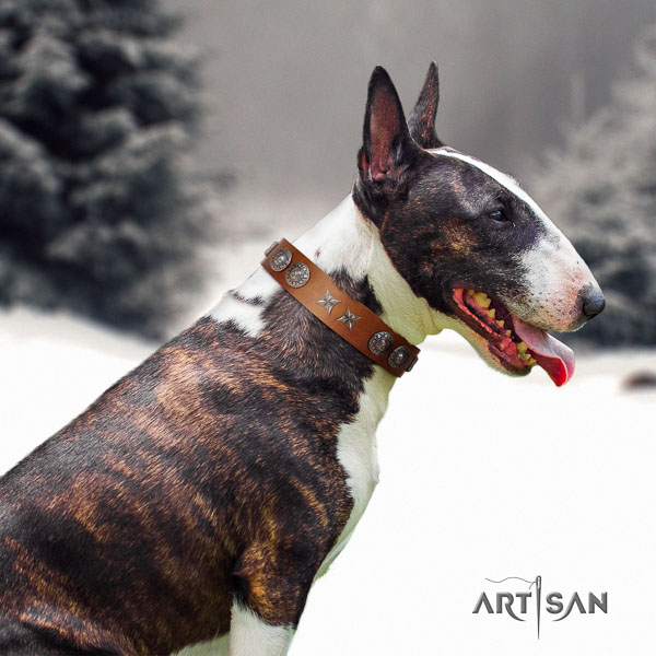 Bull Terrier stylish walking dog collar of comfortable genuine leather