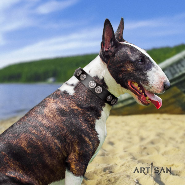 Bull Terrier walking dog collar of fine quality genuine leather