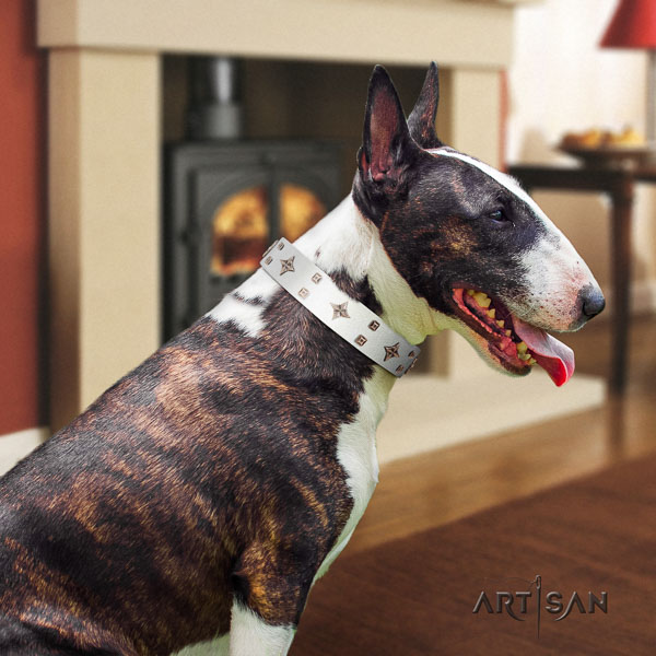 Bull Terrier comfortable wearing dog collar of top notch quality leather