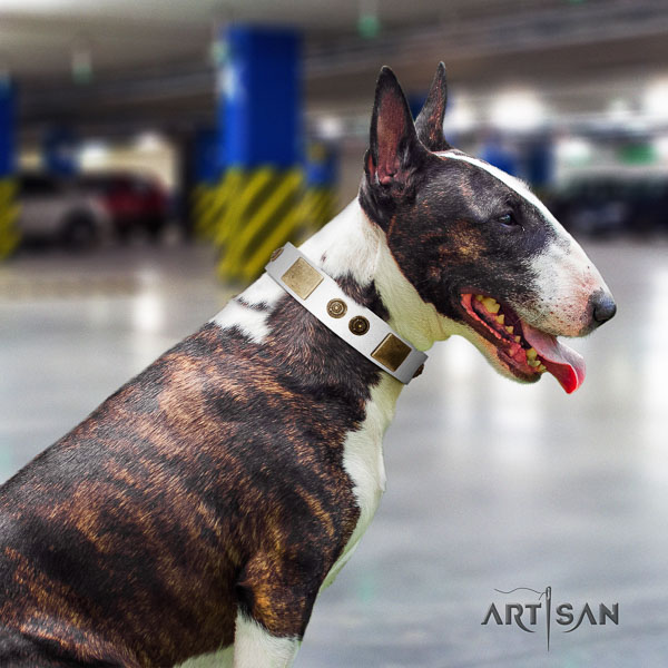 Bull Terrier stylish design full grain natural leather dog collar with decorations