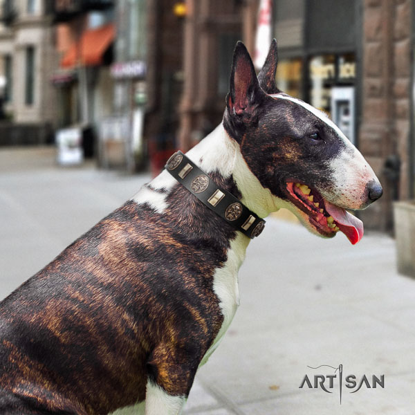 Bull Terrier fashionable natural genuine leather dog collar with studs