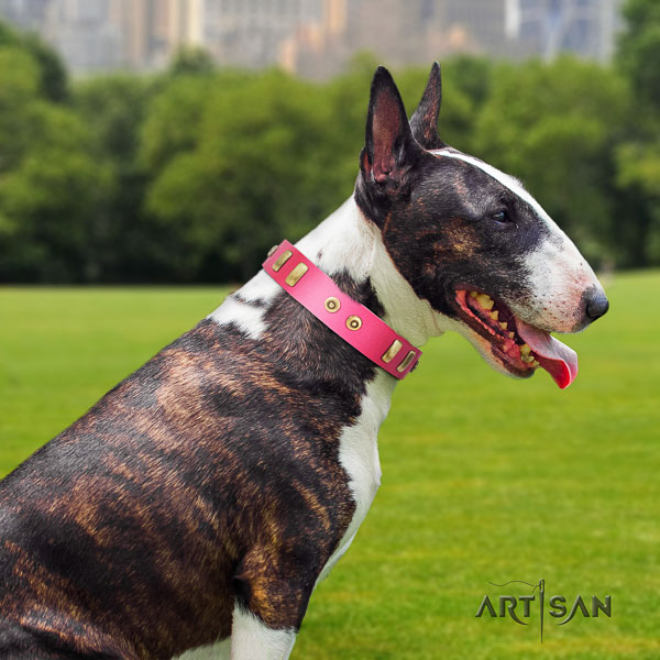 Bull Terrier fancy walking dog collar of top quality genuine leather
