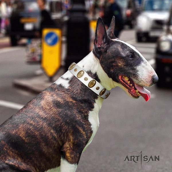 Bull Terrier convenient natural genuine leather dog collar with studs